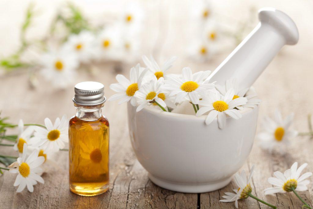 chamomile uses