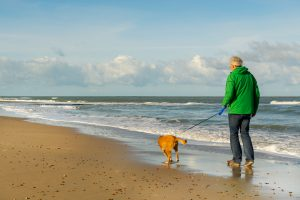 pets and people, benefits of having a pet, people and pets, adopt a pet