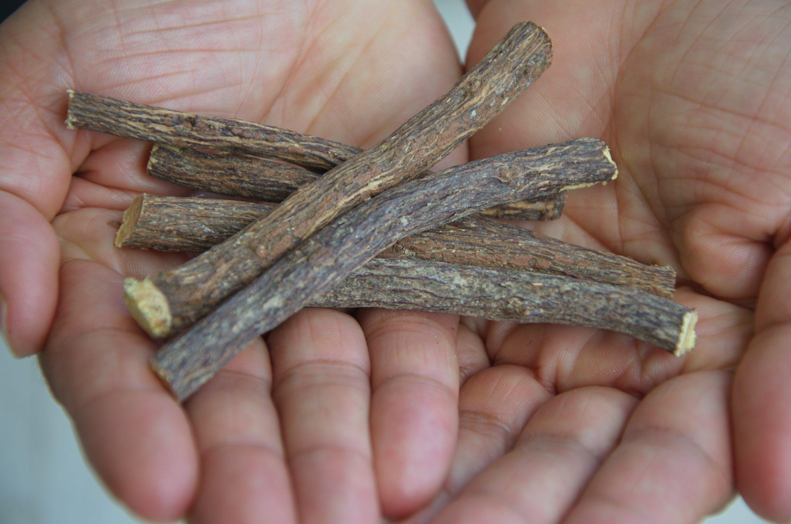 licorice root, licorice root benefits, licorice root tea, licorice root extract