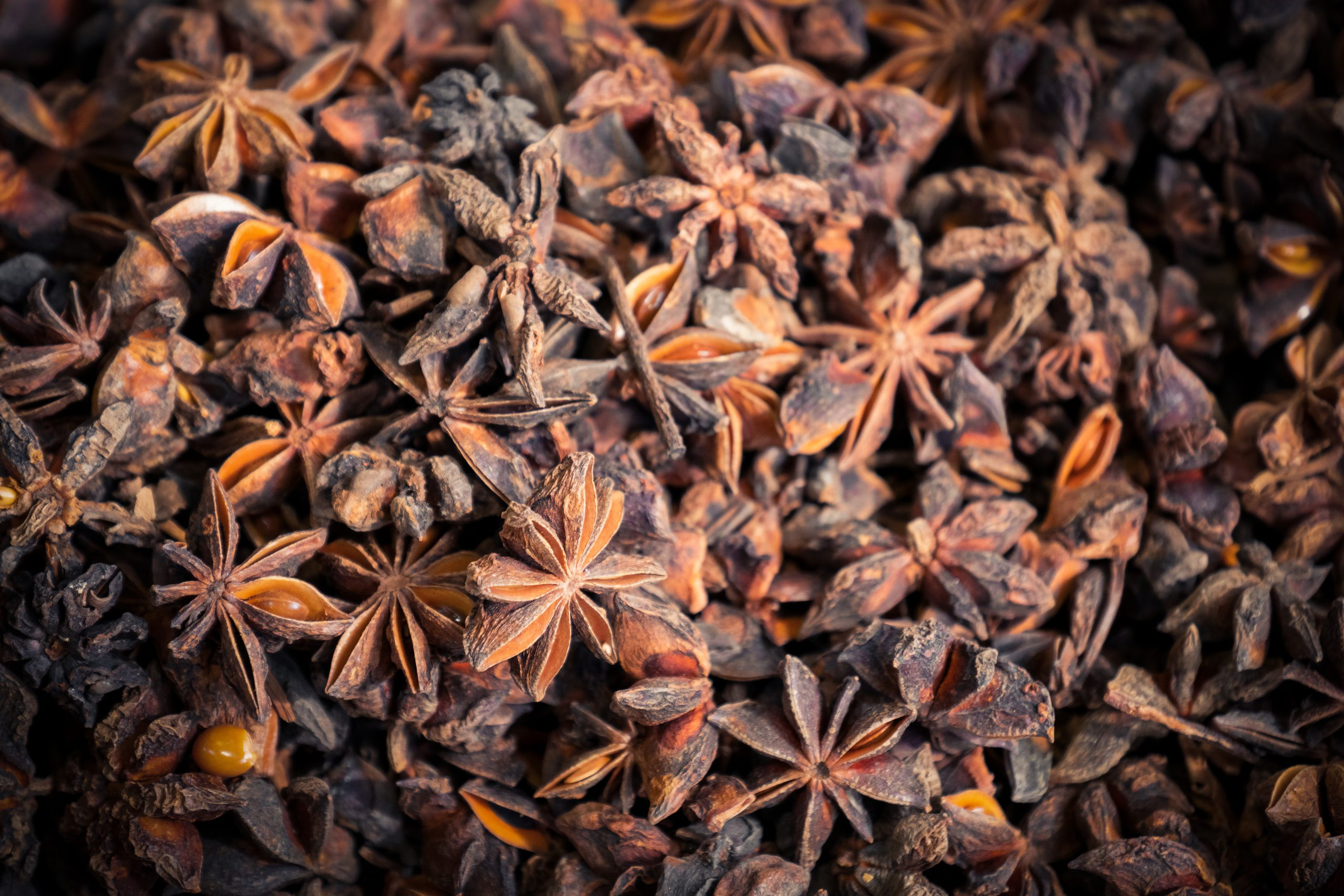star anise substitute, star anise pods, what is star anise